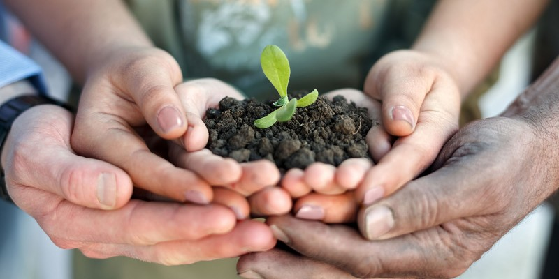 Donate – Plant A Seed Institute